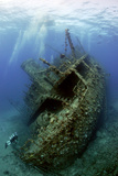 Giannis D Wreck Photographic Print by Dray Van Beeck