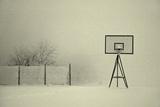 Winter Playground Photographic Print by Jure Kravanja