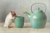 The Teapot Photographic Print by Ellen Van Deelen