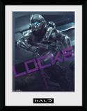Halo 5 Locke Stampa del collezionista