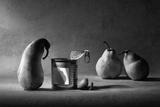 The Canned Friend Reproduction photographique par Victoria Ivanova