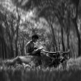 Learn Spirit Photographic Print by Antonyus Bunjamin (Abe)