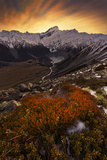 Mount Sefton Photographic Print by Yan Zhang