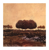 Oak Trees Prints by Kerry Darlington