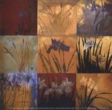 Iris Nine Patch II Print by Don Li-Leger