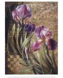 Iris Romance Poster by Fangyu Meng