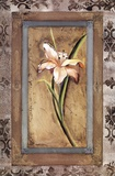 Day Lily I Poster by  Mindeli