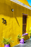 """Awesome South Africa Collection - Colorful Houses """"Seventy Three"""" Yellow Photographic Print by Philippe Hugonnard"""