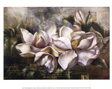 Dawning Magnolias Prints by Fangyu Meng