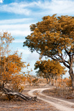 Awesome South Africa Collection - Savanna Landscape III Photographic Print by Philippe Hugonnard