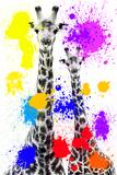 Safari Colors Pop Collection - Giraffes