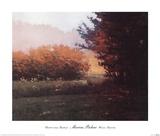 Montlake Hedge Prints by Marcus Bohne