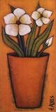 Flores Brancas II Posters by H. Alves