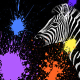 Safari Colors Pop Collection - Zebra II Giclee Print by Philippe Hugonnard