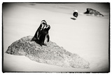 Awesome South Africa Collection B&W - Penguin Lovers Photographic Print by Philippe Hugonnard