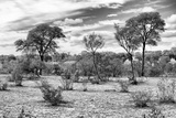 Awesome South Africa Collection B&W - African Landscape IV Photographic Print by Philippe Hugonnard