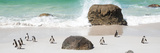 Awesome South Africa Collection Panoramic - Penguins on the Beach II Fotografisk tryk af Philippe Hugonnard