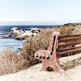 Awesome South Africa Collection Square - Lonely Bench Photographic Print by Philippe Hugonnard