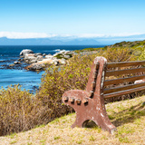 Awesome South Africa Collection Square - Lonely Bench II Photographic Print by Philippe Hugonnard