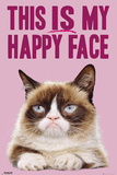 Grumpy Cat- Happy Face Pósters