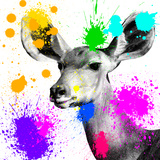 Safari Colors Pop Collection - Antelope Portrait II Giclee Print by Philippe Hugonnard