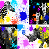 Safari Colors Pop Collection Giclee Print by Philippe Hugonnard