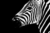 Safari Profile Collection - Zebra Portrait Black Edition II Photographic Print by Philippe Hugonnard