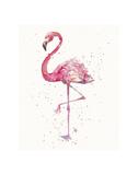 A Flamingo's Fancy Plakat autor Sillier than Sally