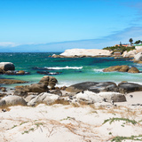 Awesome South Africa Collection Square - Penguin Colony on Beach Photographic Print by Philippe Hugonnard