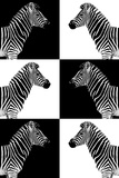 Safari Profile Collection - Zebras Photographic Print by Philippe Hugonnard