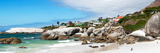 Awesome South Africa Collection Panoramic - Boulders Beach Penguins Colony Photographic Print by Philippe Hugonnard