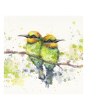 Family (Rainbow Bee Eaters) Prints by  Sillier than Sally