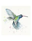 Hummingbird Flurry Affiches par  Sillier than Sally