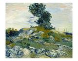The Rocks, 1888 Posters af Vincent van Gogh