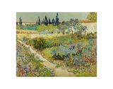 Garden at Arles, 1888 Poster von Vincent van Gogh
