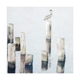 Perched Pelican Prints by Bruce Nawrocke
