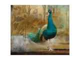 Feathered Dreams II Kunstdruck von Patricia Pinto