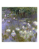 Water Lilies, 1922 Plakater af Claude Monet