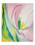 Pink Tulip, 1926 Posters av Georgia O'Keeffe