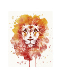 Pride (Watercolor Lion) Prints by  Sillier than Sally