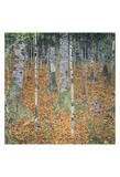 Birch Forest, 1903 Posters by Gustav Klimt