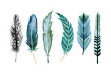 Teal Feathers IV Prints by Margaret Berg
