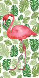 Tropical Flamingo II Poster by Wild Apple Portfolio