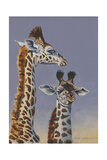 Two Young Giraffes Prints by Peter Blackwell