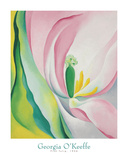 Pink Tulip, 1926 Poster von Georgia O'Keeffe