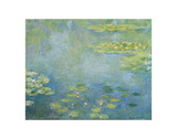 Waterlilies, ca. 1906 Prints by Claude Monet