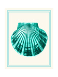 Mixed Nautical Turquoise on Cream d Art by Fab Funky