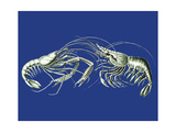 Shrimps On Blue Art by Fab Funky