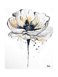 Black and White Poppies II Prints by Patricia Pinto