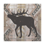 Southwest Lodge Animals I Prints by  Vision Studio